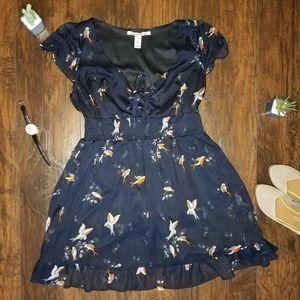 American Rag Swallow Pattern Dress